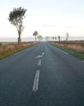 Road through the battlefields