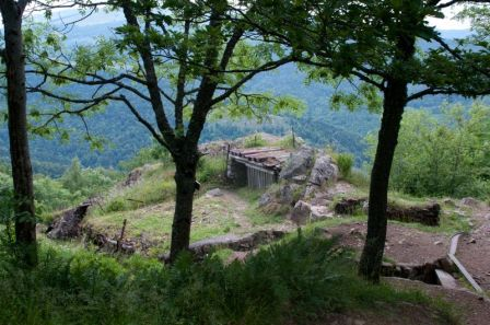 Hills at Hartmannswillerkopf