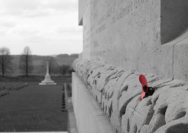 A single poppy at Thiepval memorial